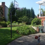 Sentimental Snapshots: Hoop Dreams