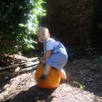 Name that Caption: A Slightly Awkward Picture with a Pumpkin…