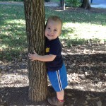 Sentimental Snapshots:  My Little Tree Hugger
