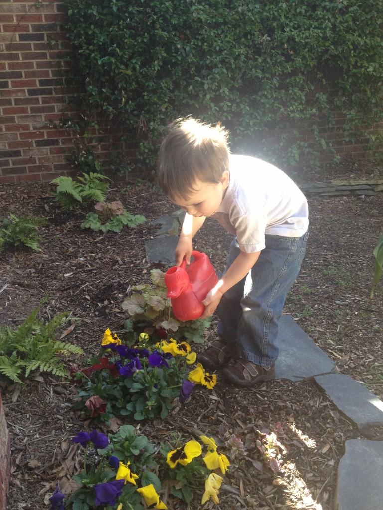 My little gardener.