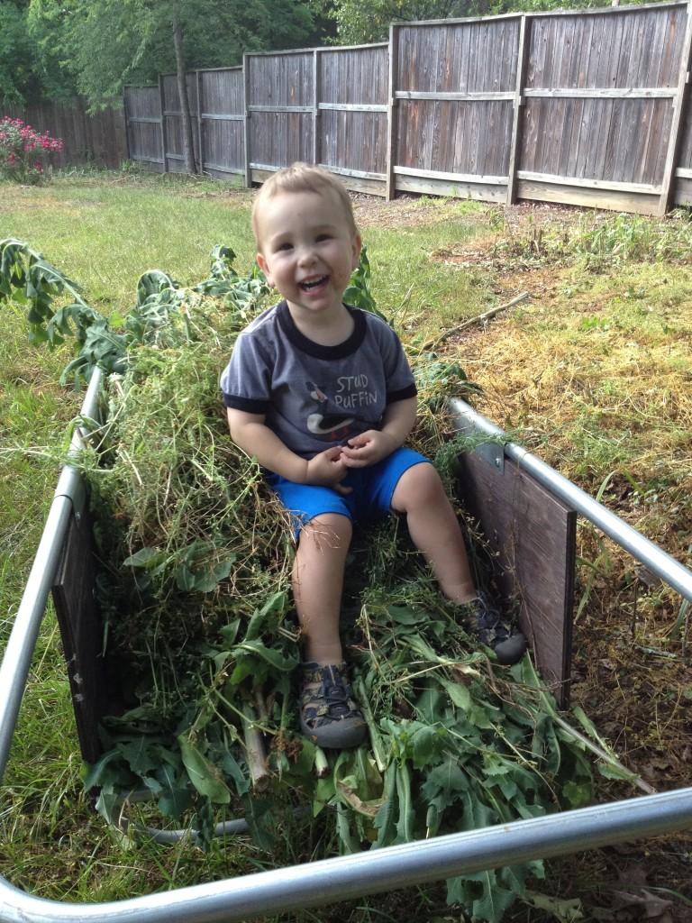 An enthusiastic helper can even make pulling weeds fun!