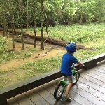 Toddler Bikes and the GOOD Kind of Peer Pressure…