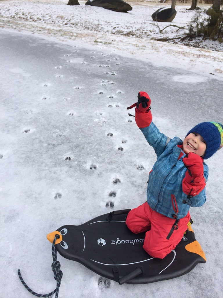 "I think this might be his ""deer impression?!?"""