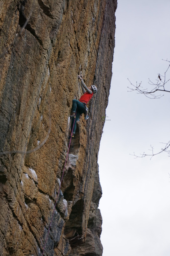 Enjoying the jugland on the upper section of Banshee 11c