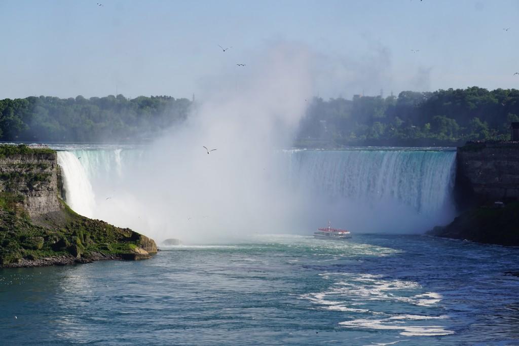 Horseshoe Falls in all it's glory!