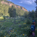 Ten Sleep Canyon, Part 1 – French Cattle Ranch and Valhalla