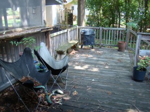 The Back Porch - note the bar area with the swivel screen to the left